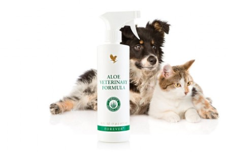 Aloe Veterinary